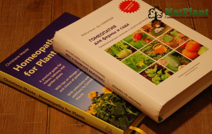 Книги Мауте и Кавираджа