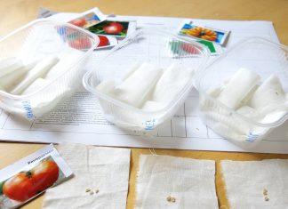 Эксперимент предпосевная обработка семян