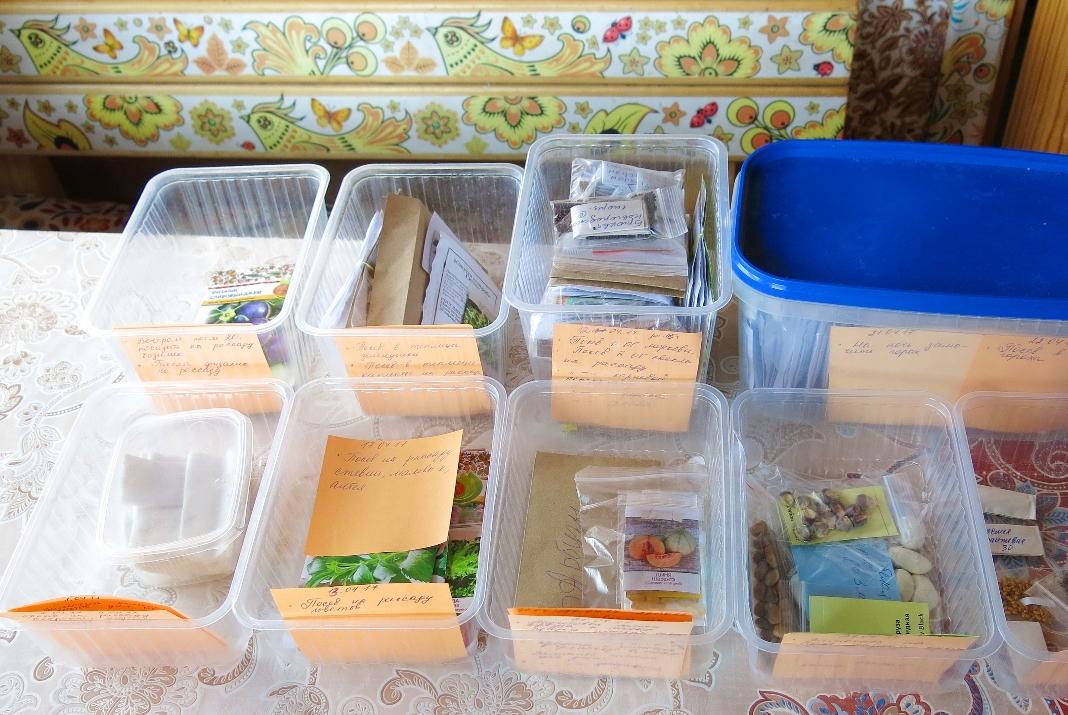 Посевной календарь на апрель 2017 года: раскладываем семена по датам посева
