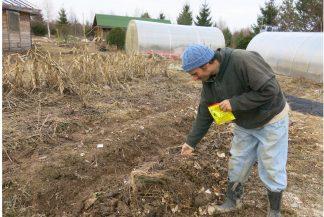Делаем компостную грядку