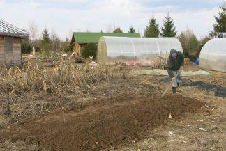 Засыпаем органику землёй