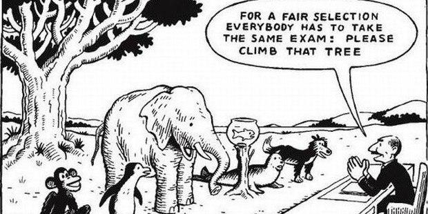 Для честной оценки все должны выполнить одинаковое задание - залезть на то дерево!