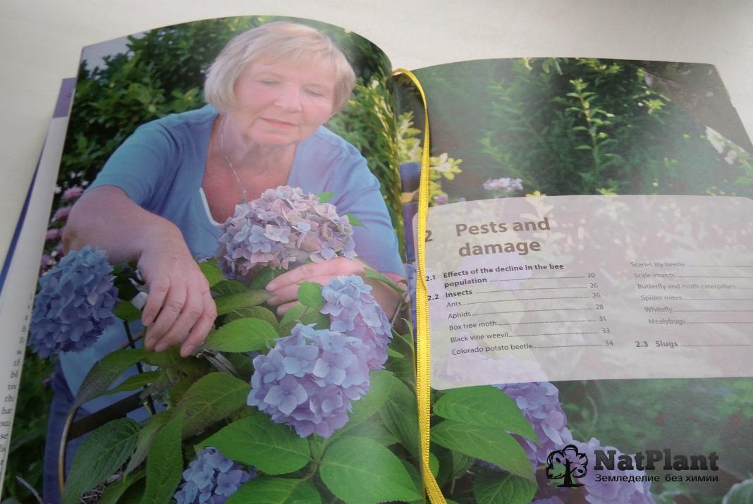 """Кристиане Мауте """"Гомеопатия для растений"""". Разворот книги"""